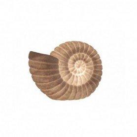 Lámpara caracola de mar decorativa