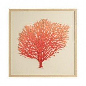 Cuadro de pared coral rojo